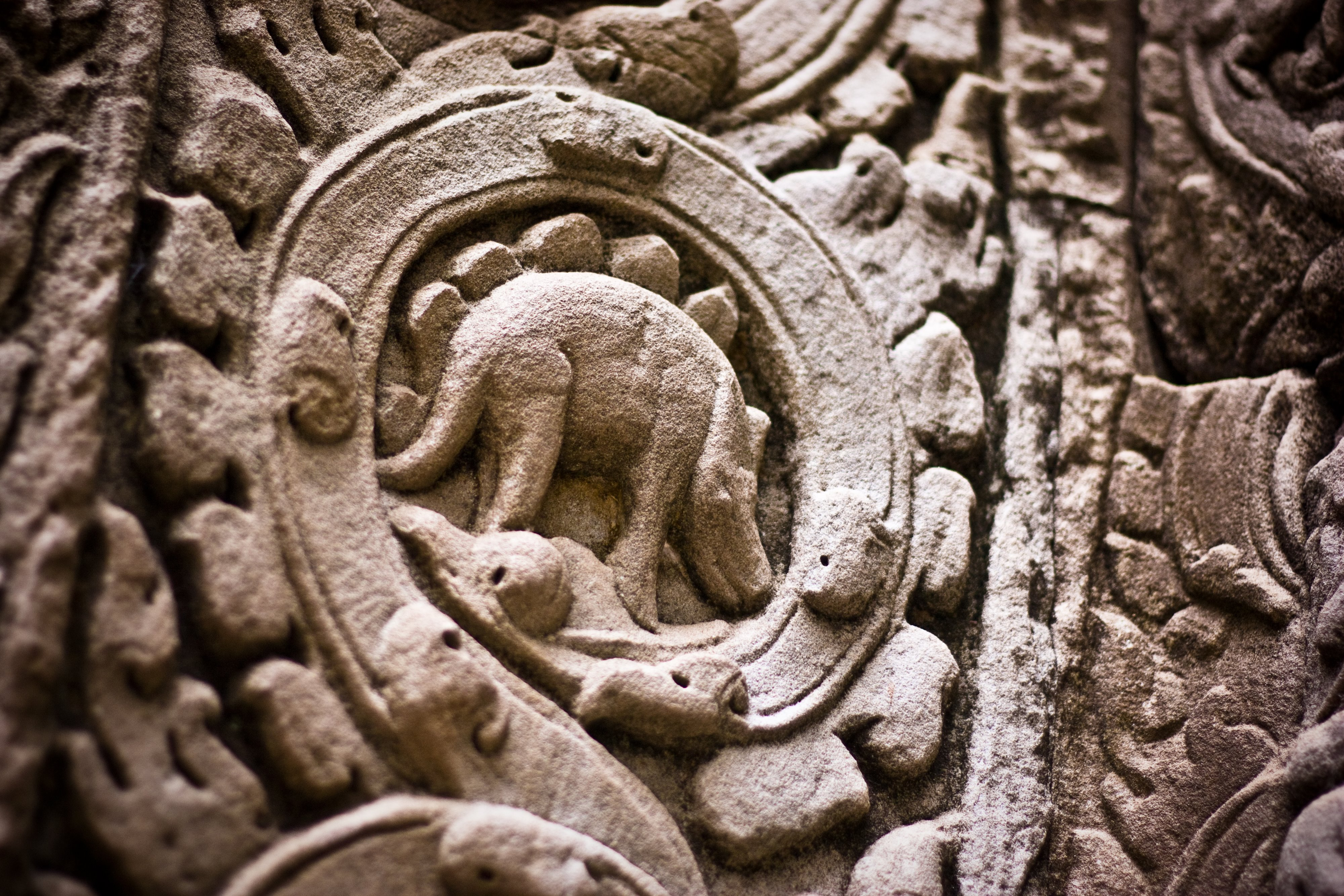 Ancient Khmer Dinosaur Engraving