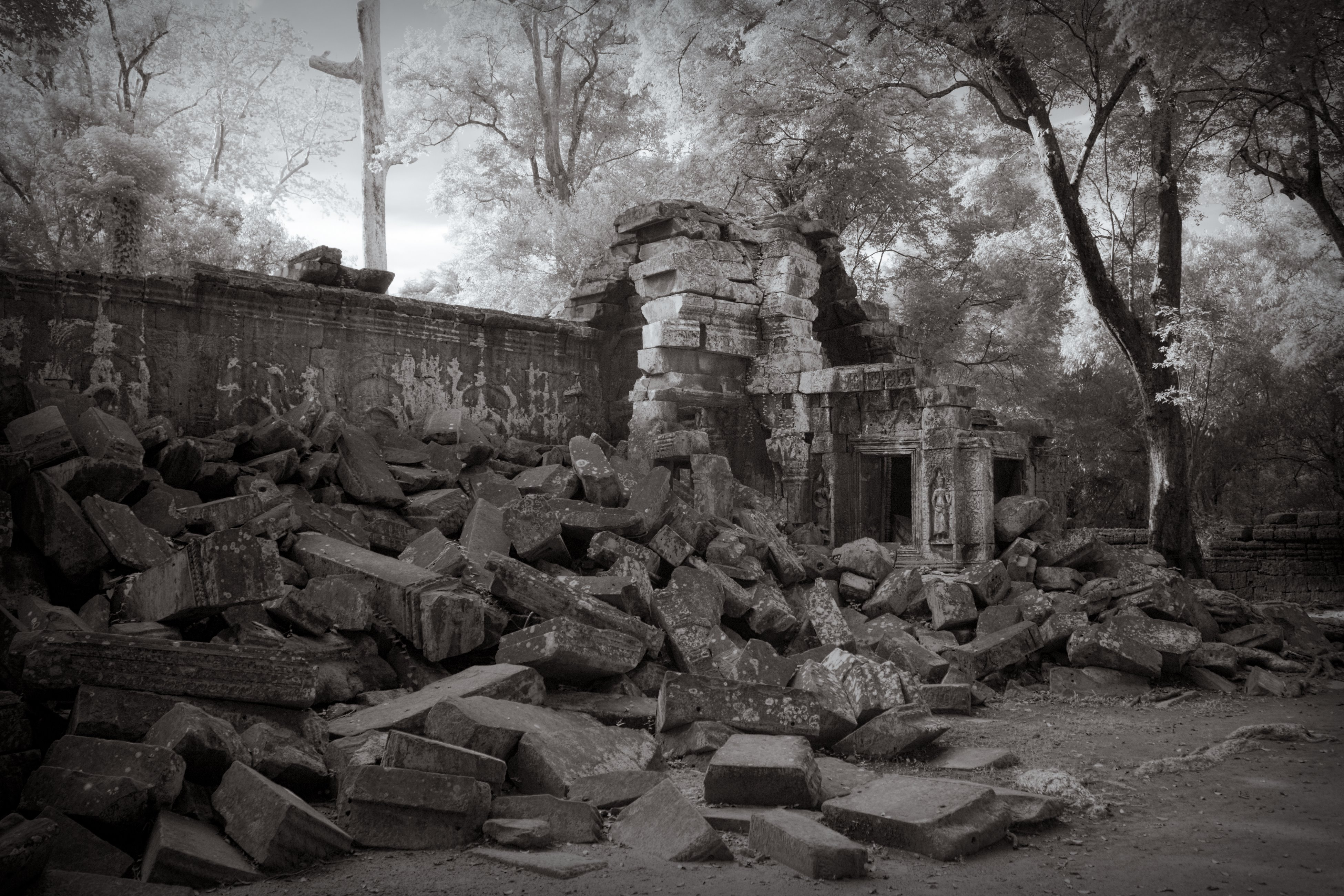 Ta Prohm Temple Ruins in Infrared