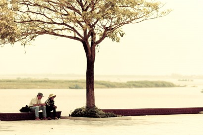 Tree on Riverside