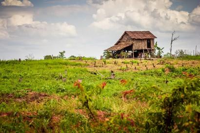 Preah-Vihear-Cambodia-Hut-9266